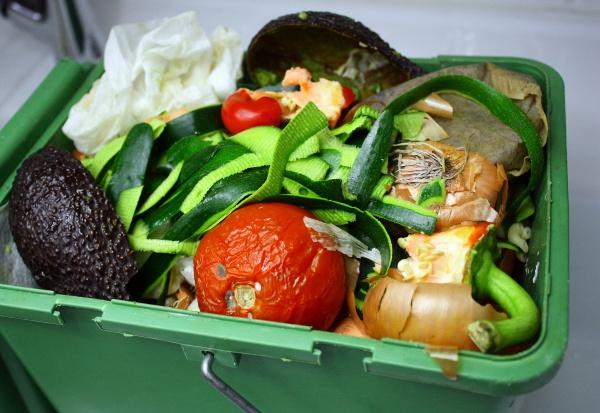 Gospodarka odpadami: kto zbiera bioodpady (biodegradowalne odpady)?