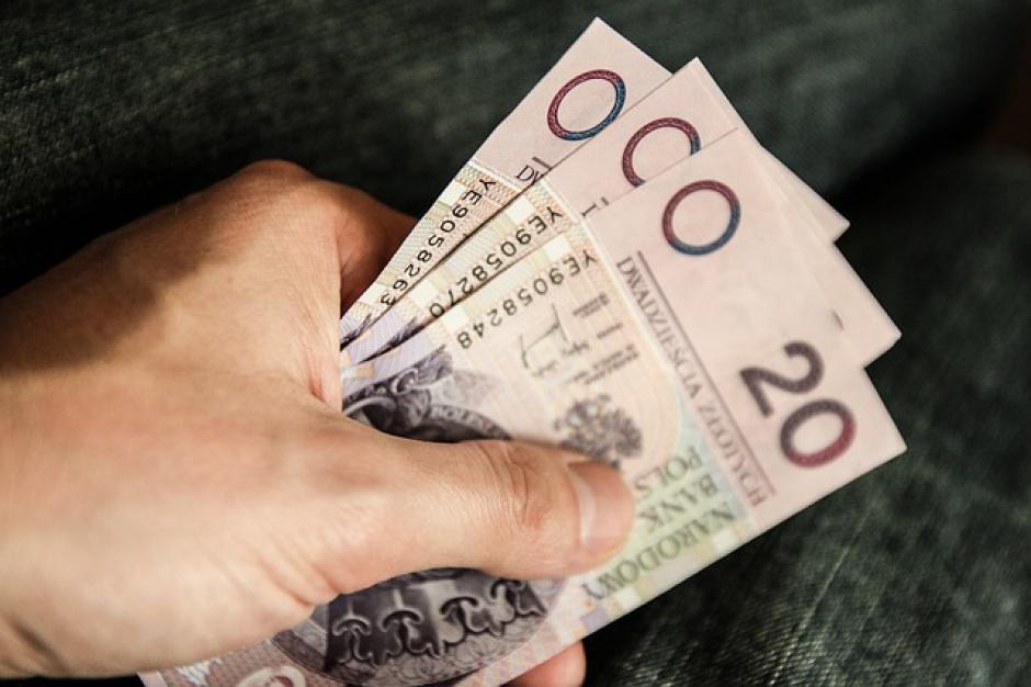 Zlecone za mniej niż 20 tys. zł
