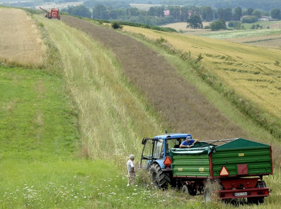 Podkarpacie: 82 mln euro na Program Rozwoju Obszarów Wiejskich