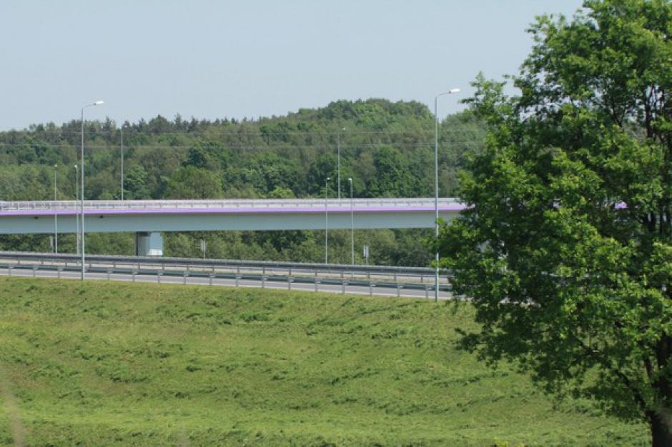 Drogi, 1050 drzew wzdłuż dróg w warmińsko-mazurskim