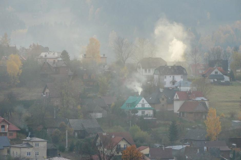 Dzień Czystego Powietrza, Polski Alarm Smogowy, protesty w całej Polsce