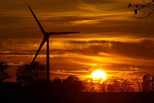 Przybywa farm wiatrowych. Gdzie jest ich najwięcej?