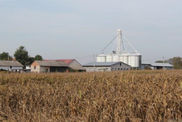 Świętokrzyskie: 300 mln zł dla wsi z PROW 2014-2020