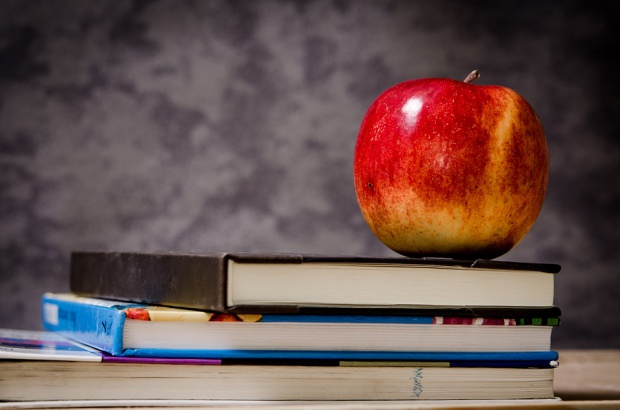 Michałkiewicz: w szkołach powinno być wychowanie do wolontariatu