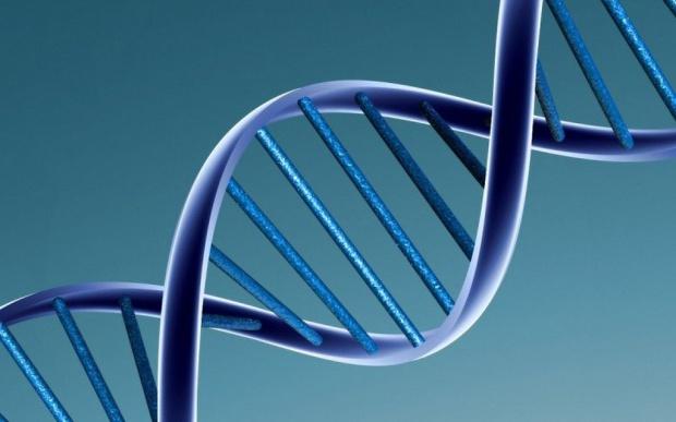 W Łodzi powstało konsorcjum zajmujące się identyfikacją genetyczną osób