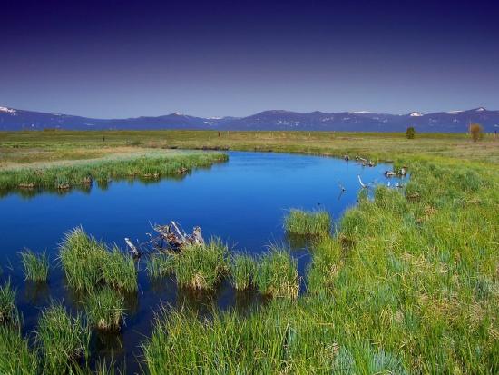 Nowelizacja Prawa Wodnego: Ryzyko powodziowe nie musi być uwzględniane przy samorządowych inwestycjach