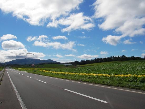 Tarnów otrzymał 14,3 mln zł dotacji na inwestycje drogowe