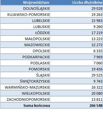 Liczba dłużników w podziale na województwa (fot.mat.pras.)