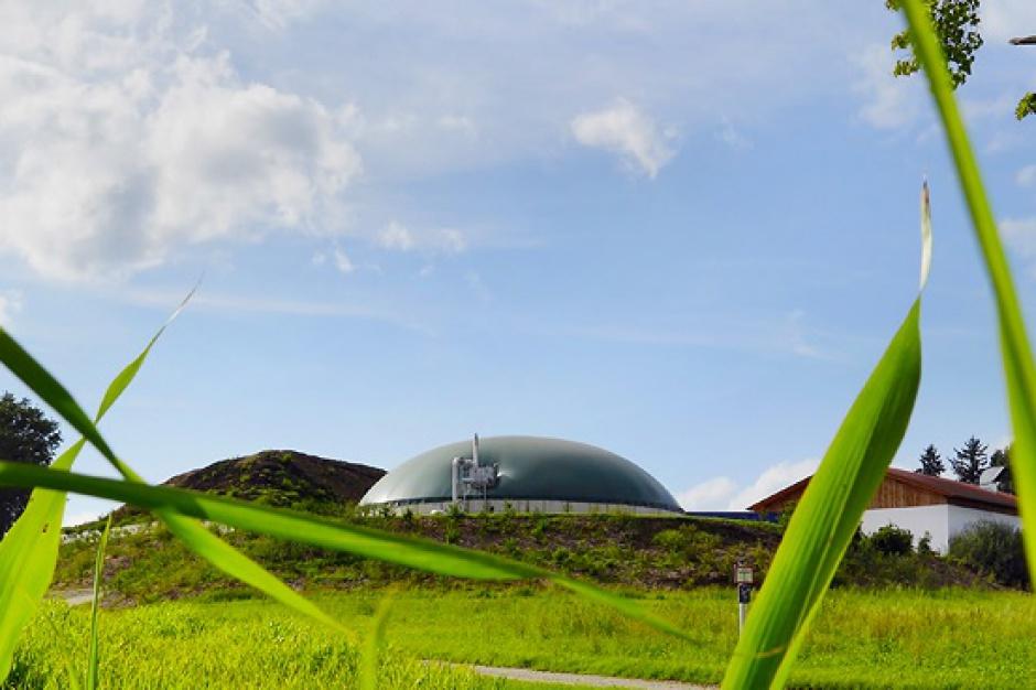 Lubelskie: powstaną pierwsze spółdzielcze biogazownie