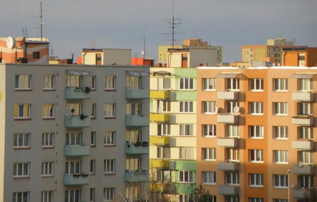 Mieszkania są przeludnione. Za mało pieniędzy od państwa trafia na mieszkalnictwo