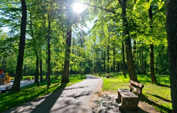 Ponad 25 mln zł na projekty środowiskowe