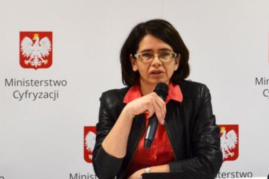 Anna Streżyńska, aplikacja Źródło: System wymaga planu naprawczego