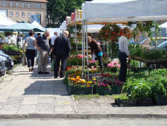 Czy to koniec Zakładu Targowisk Miejskich w Olsztynie?