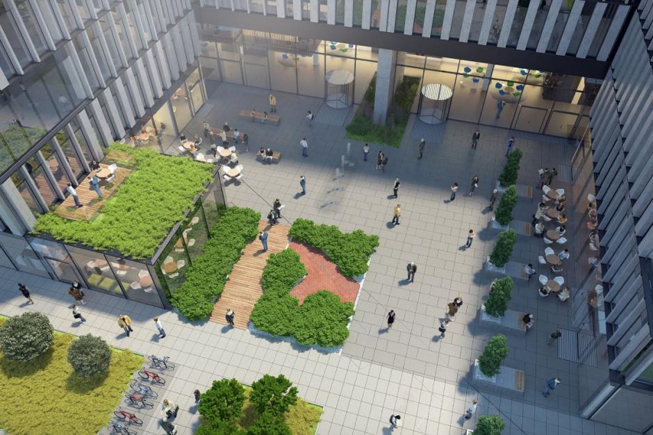 Budownictwo ekologiczne: Jak korzystać z zielonych budynków?