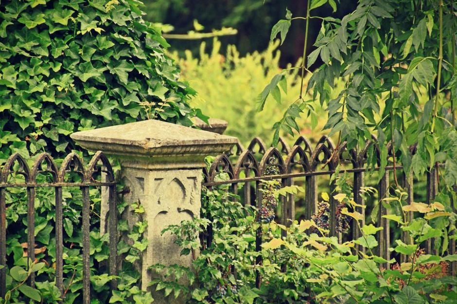 Płońsk, budowa centrum handlowego na dawnym cmentarzu żydowskim: Konserwator jest przeciwko