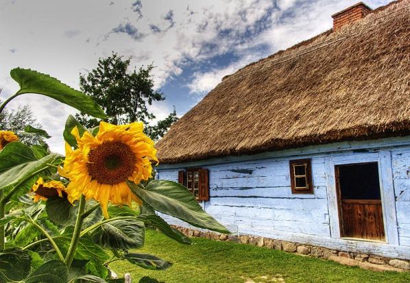 Sierpc: Skansen wsi mazowieckiej postawi odnawialne źródła energii