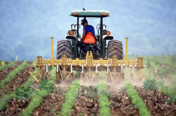 ARiMR, dopłaty dla rolników z PROW: Można składać wnioski za 2016 r.