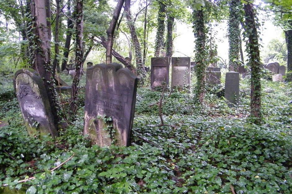 Cmentarze żydowskie: Będzie wsparcie na renowacje cmentarzy