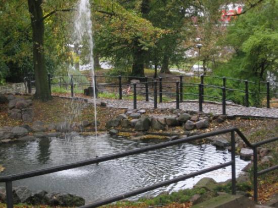 Bydgoszcz uporządkuje parki