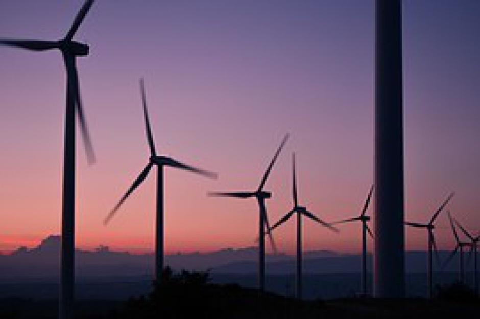 PiS stawia na inne odnawialne źródła energii