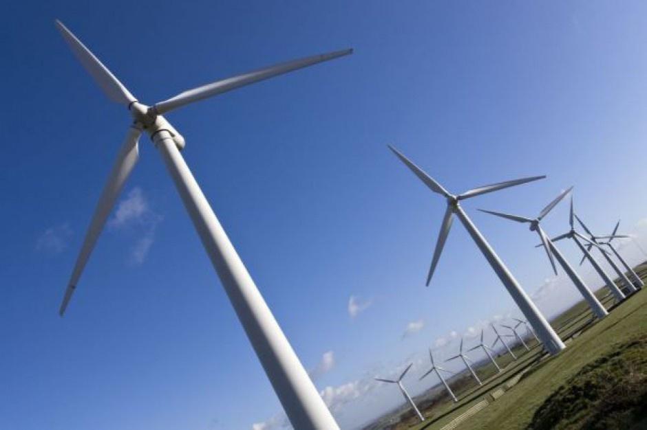 EEC 2016: Farmy wiatrowe? Jedynie w lasach i na jeziorach