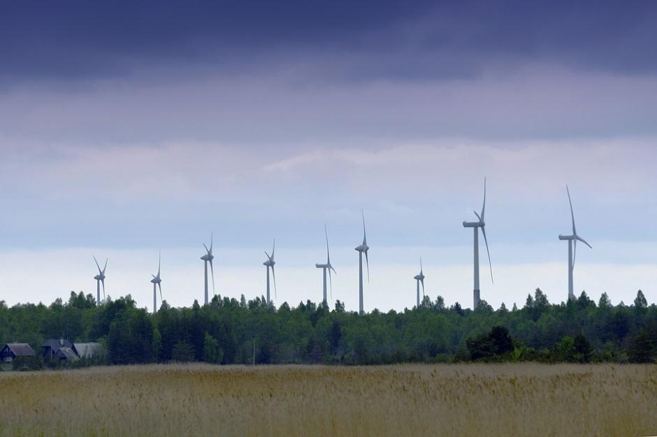 Polskie Stowarzyszenie Energetyki Wiatrowej jest organizacją pozarządową działającą od 1999 roku, źródło: pixabay.com