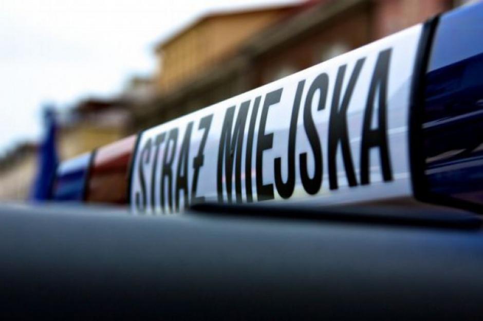 Strażnicy miejscy odpowiedzą za korupcję