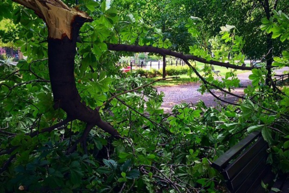 Małopolska: Straty po huraganowym wiatrze