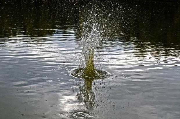 PO krytykuje projekt nowego Prawa wodnego. Podrożeją ceny towarów i usług?