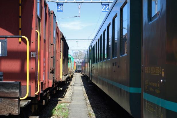 Polacy polubili pociągi