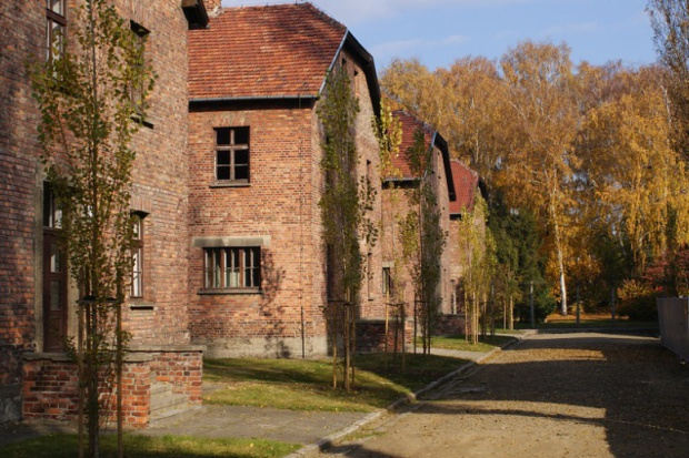 Baraki obozu Auschwitz w Oświęcimiu. Fot. Pixabay.com