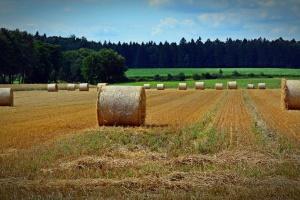 W województwie działa 29 komisji ds. szacowania strat w rolnictwie