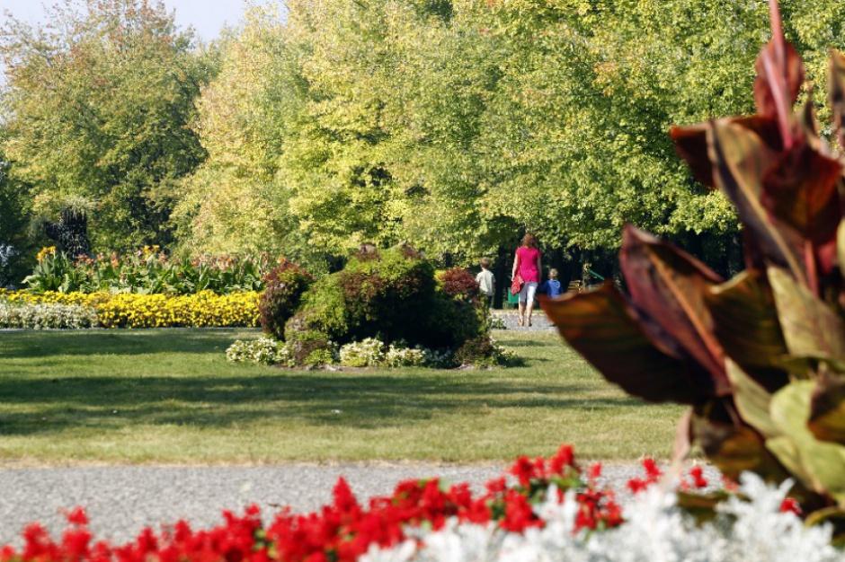 Politycy i olimpijczycy społecznie na rzecz Parku Śląskiego