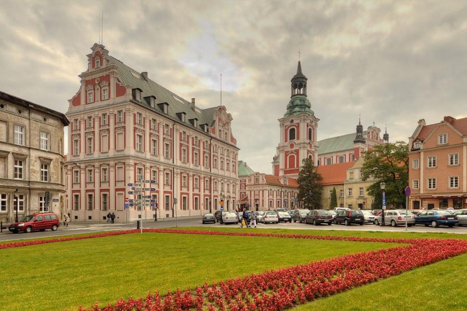 Urząd Miasta w Poznaniu, staże: na studentów czeka ponad 90 miejsc