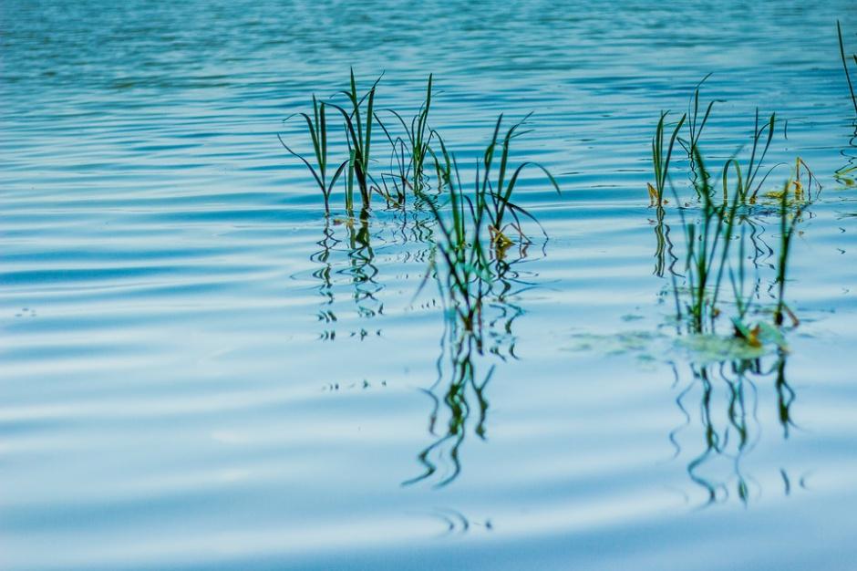 Świerklaniec: przyjęto plan zagospodarowania terenów przy zalewie Nakło-Chechło
