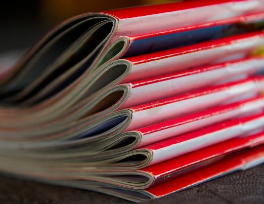 Zakaz czasopism politycznych na terenie szkół - komisja sejmowa odrzuciła projekt