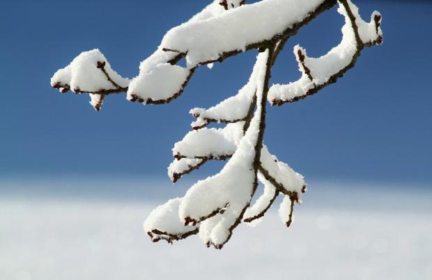 Śnieg w Zakopanem i nie tylko: Pierwsze ostrzeżenia lawinowe