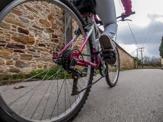 Katowice chcą rozbudowywać infrastrukturę rowerową