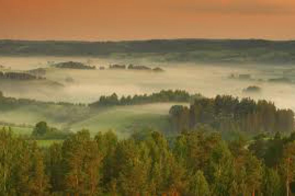Podlaskie, nabór wniosków RPO: 10 mln zł z UE na zachowanie bioróżnorodności krajobrazu