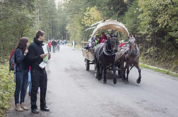 Zakopane, Morskie Oko: rozpoczęły się testy hybrydowego wozu konnego