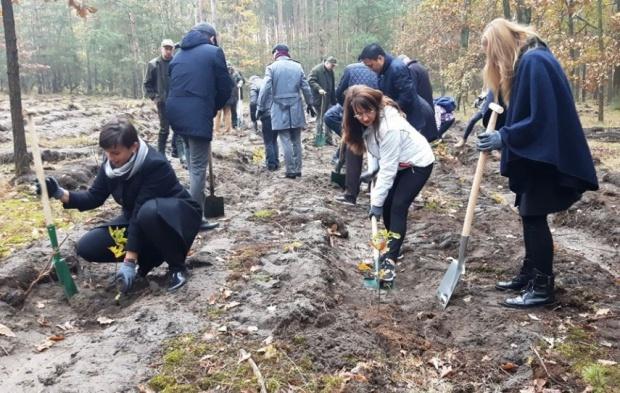 Warszawa: Dyplomaci sadzą drzewa na Białołęce