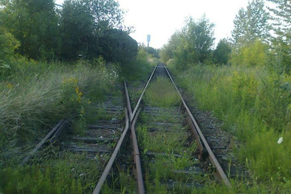 Podkarpackie. Wolontariusze oczyszczają linię kolejową Przemyśl-Malhowice