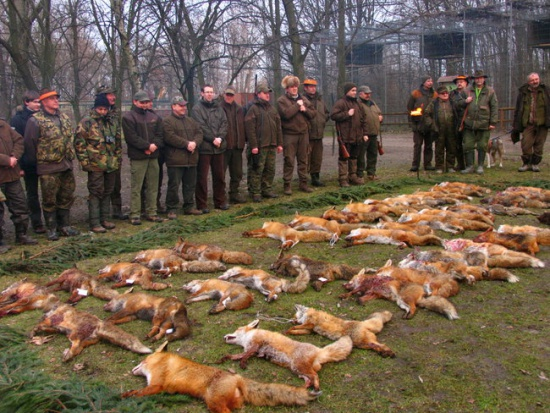 Hubertus: Święto myśliwych pod znakiem ustępstw, protestów, ASF i odstrzału dzików