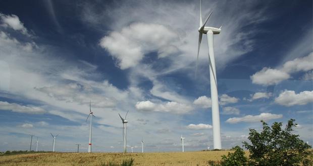 Ustawa wiatrakowa, Wielkopolskie: 150 postępowań ws. budowy elektrowni wiatrowych