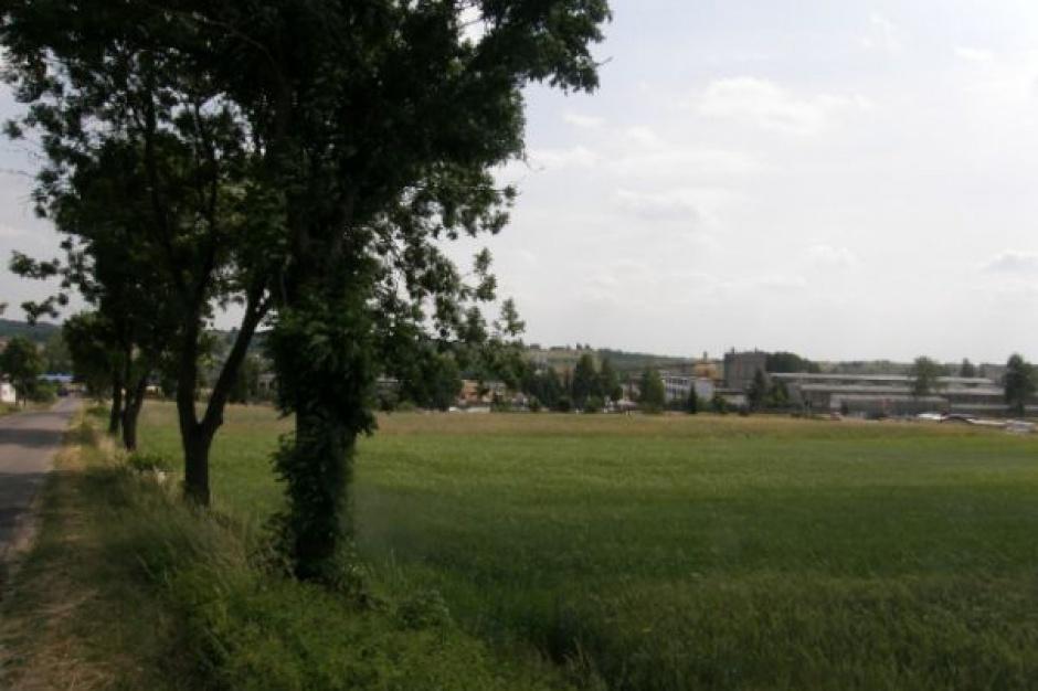 Gmina Kurzętnik, 500 plus: Działki budowlane dla rodzin za połowę ceny