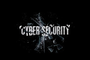 Policja będzie walczyć z cyberprzestępcami