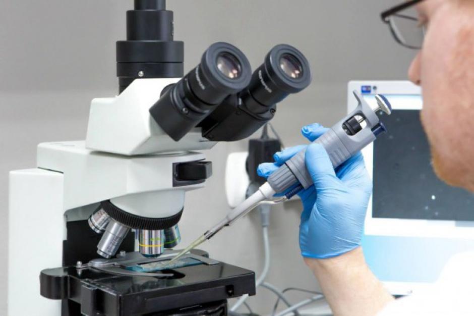 W Płocku będzie dofinansowanie in-vitro?