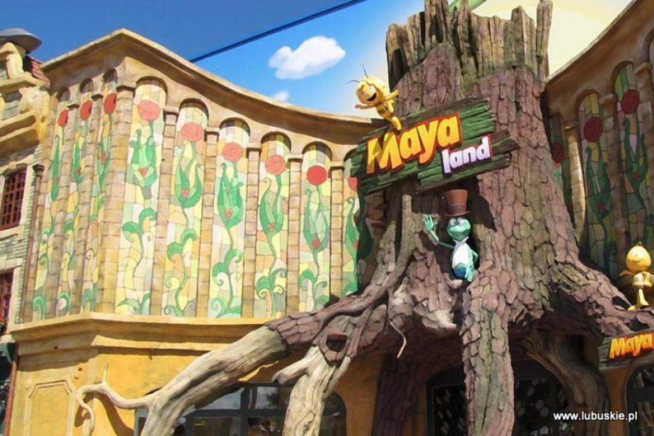 Torzym, lubuskie: Mała gmina stawia na pszczółkę Maję i park rozrywki
