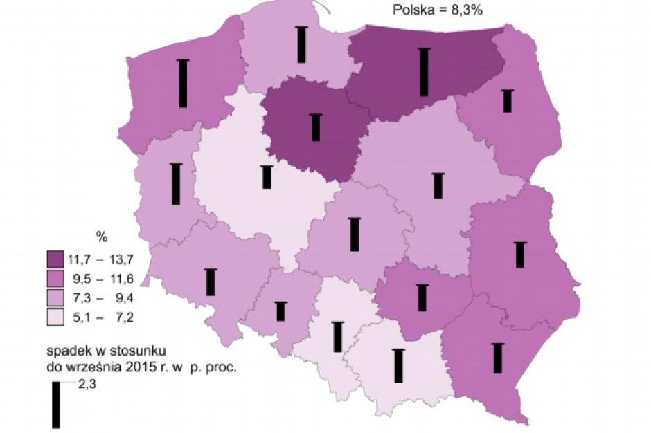 GUS: W Polsce zmalało bezrobocie, wzrosły wynagrodzenia
