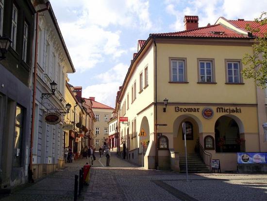 Bielsko-Biała: Radni uchwalili budżet miasta na 2017 r.